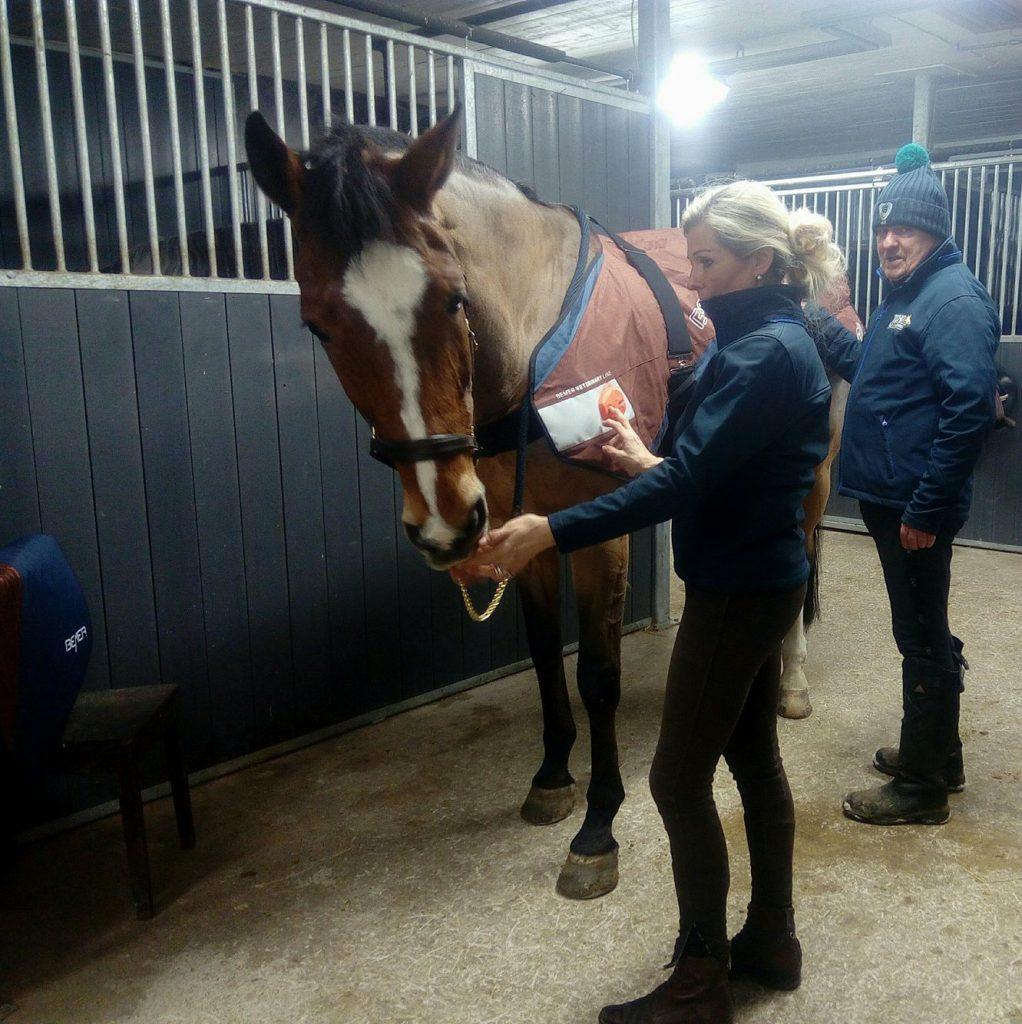 Hoitoa hevosille ja ihmisille – Pekka Larsen
