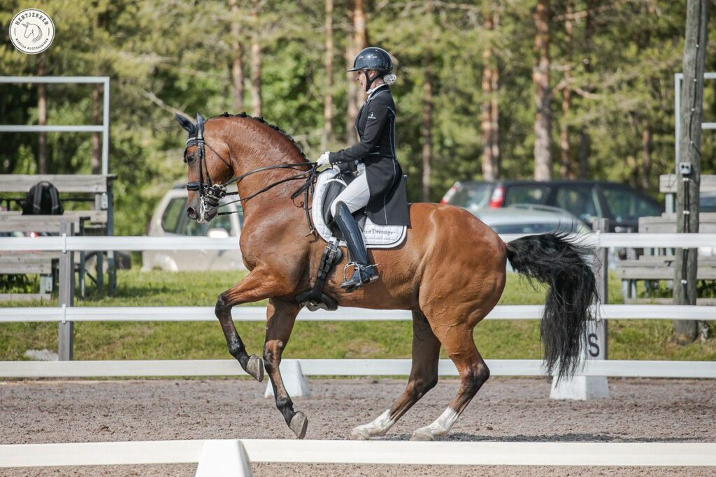 SM-ratsastaja Pilvi Tuominen ja G-Renzo tyytyväisiä BEMER®-terapiaan